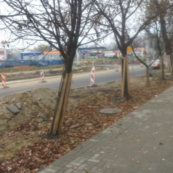 remont_ul_leczynska_lublin_17