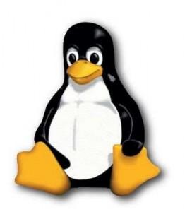 linux-penguin-272x300
